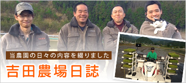 吉田農場日誌