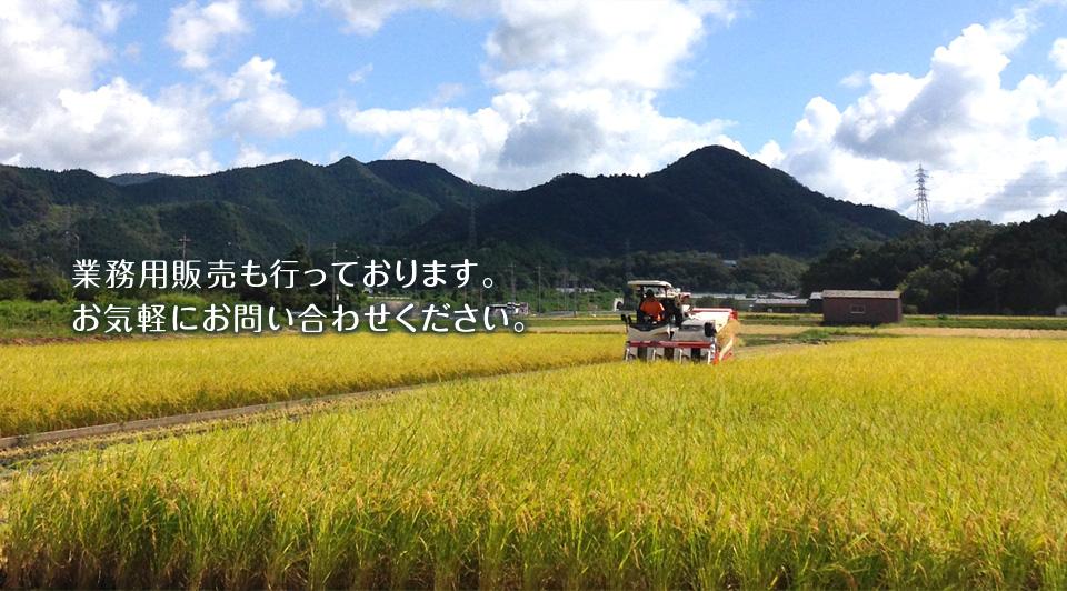 吉田農場合同会社
